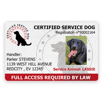 servicedog-certificationcard